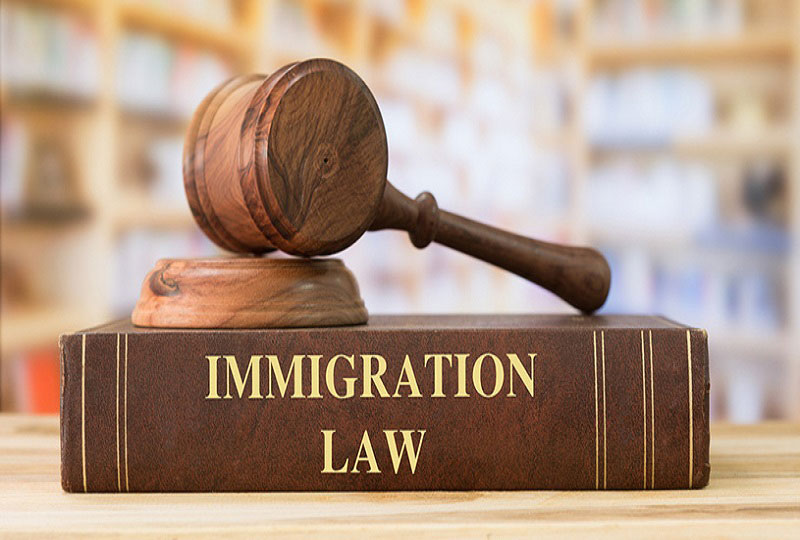 وکیل مهاجرت کیست